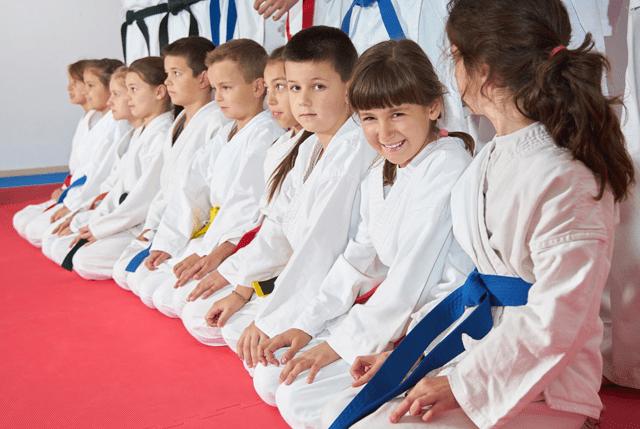 Kidsvirtualleader, Sterner's Tae Kwon Do Academy