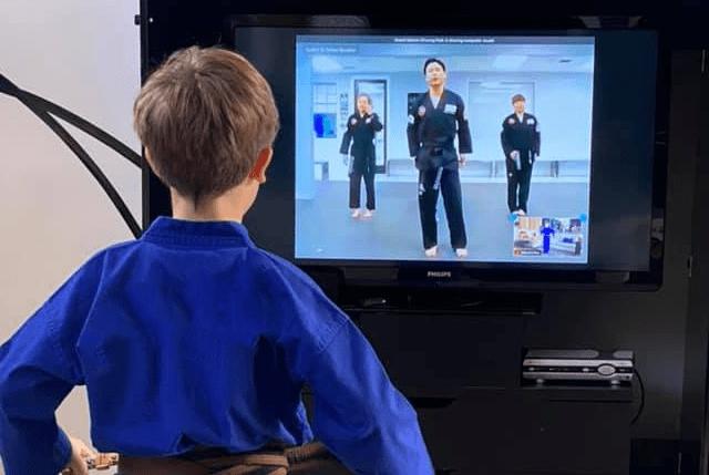 Kidsvirtualnologo, Sterner's Tae Kwon Do Academy