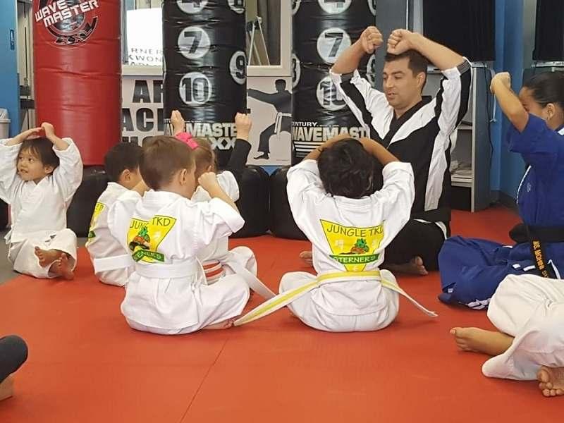 Webp.net Resizeimage 27, Sterner's Tae Kwon Do Academy