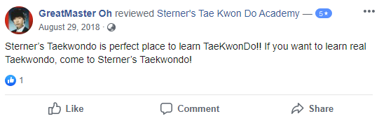 Adult1, Sterner's Tae Kwon Do Academy