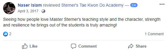 Adult3, Sterner's Tae Kwon Do Academy
